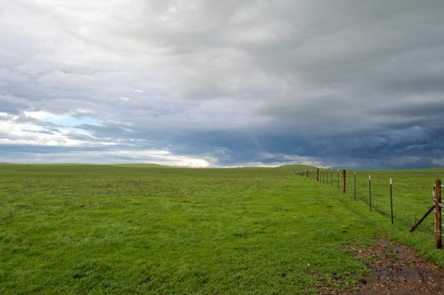 Sierra Steppe